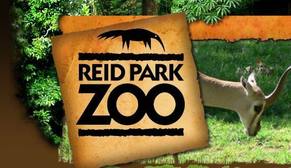 Reid Park Zoo on Animals And Their Habitats